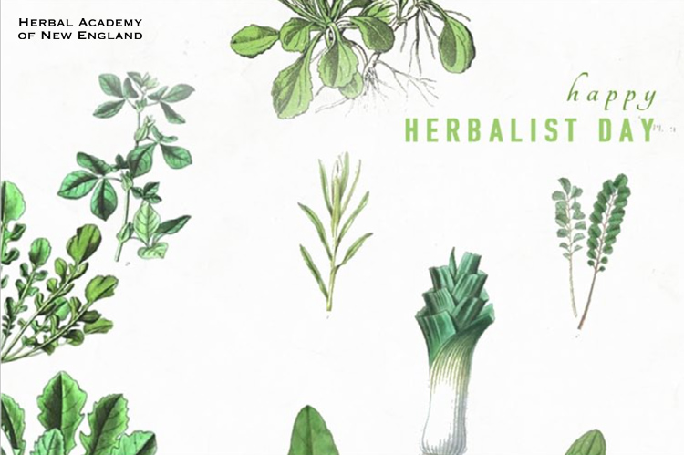 Thank-you-from-HANE-Thank-an-Herbalist